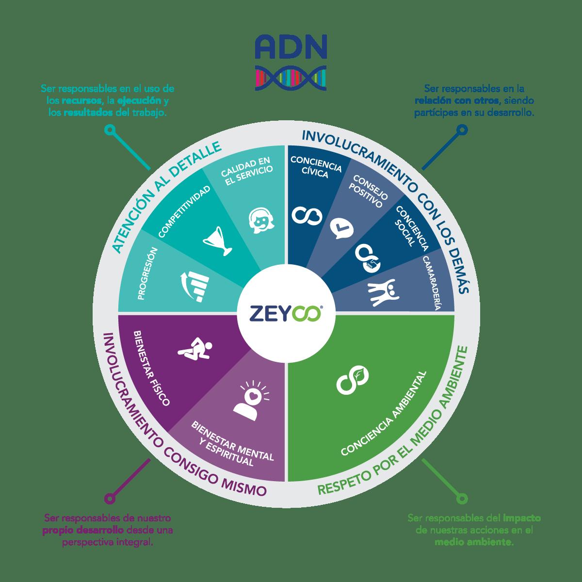 adn-zeyco